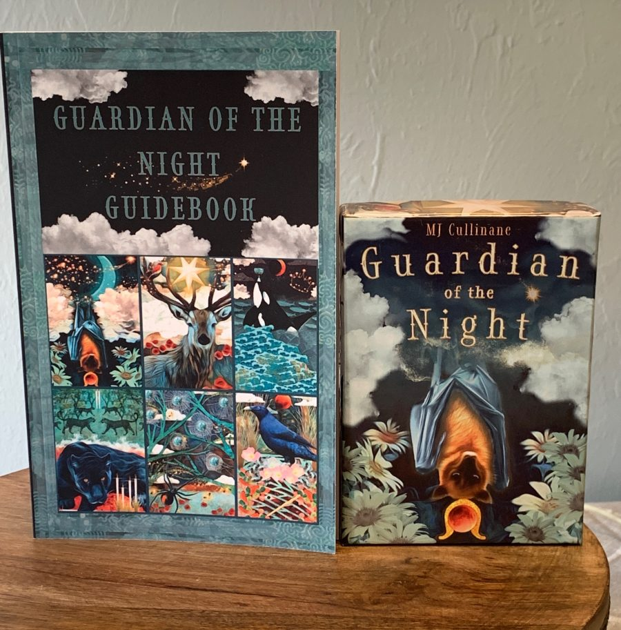 guardian on the night tarot