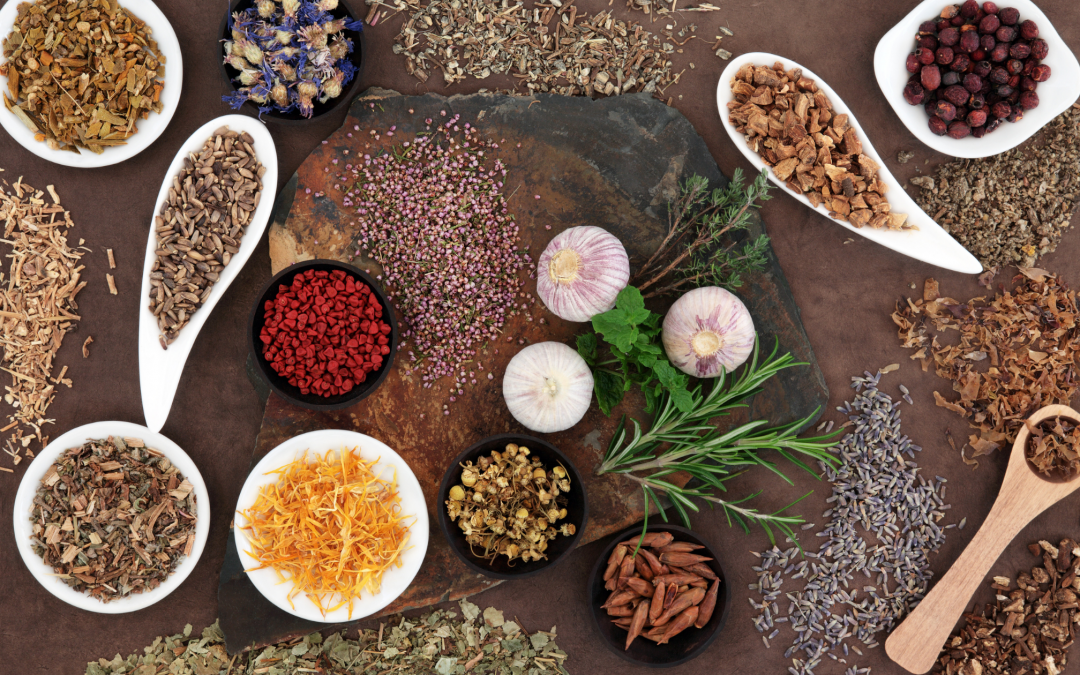 Herbs 101 with Laurie Barraco